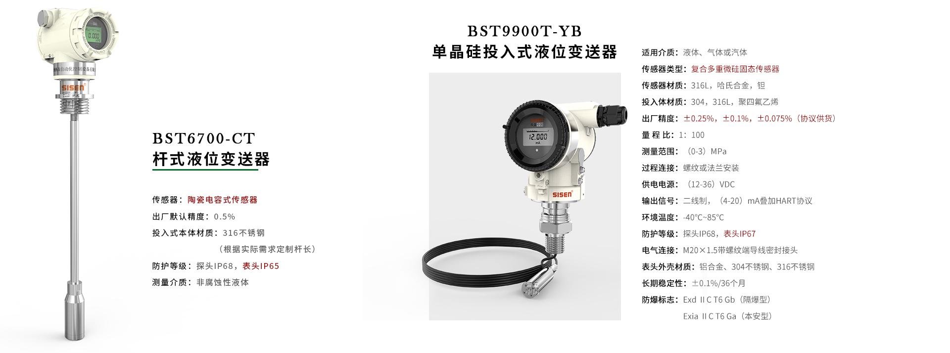 BST6700杆式液位变送器