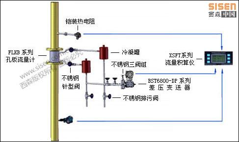 西森过热蒸汽计量系统