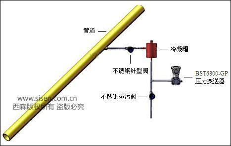 BST6800压力变送器示意图